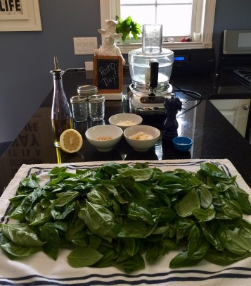 Basil Pesto ingredients equipment